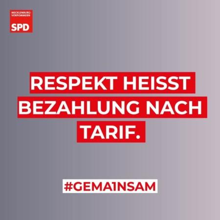 Arbeit Lohn Tarif SPD MV